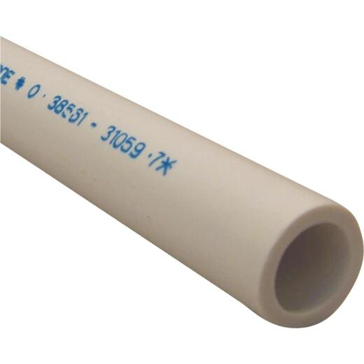 Charlotte Pipe 1/2 In. x 5 Ft. Schedule 40 Cold Water PVC Pressure Pipe